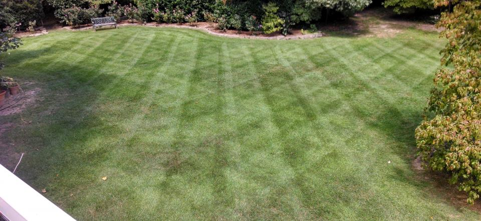Let us help you create the lawn of your dreams!